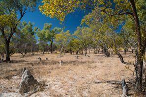 Szállás Miles, Ausztrália