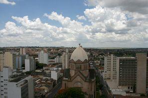 Szállás Araraquara, Brazília