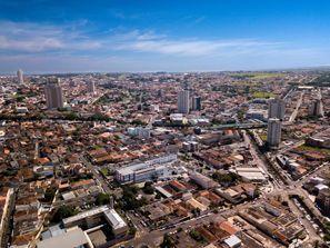 Szállás Franca, Brazília