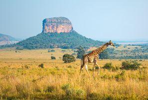 Szállás Ellisras, Dél-Afrika