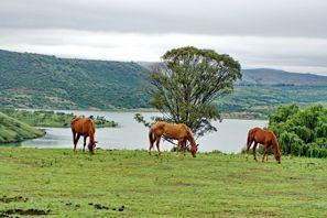 Szállás Estcourt, Dél-Afrika