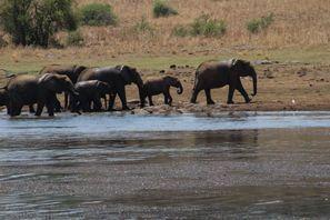 Szállás Kruger Gate, Dél-Afrika