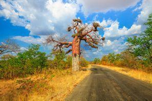 Szállás Makhado, Dél-Afrika
