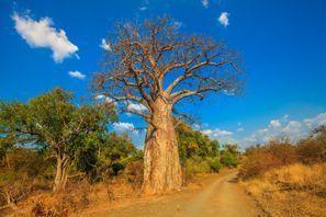 Szállás Musina, Dél-Afrika