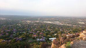 Szállás Rosebank, Dél-Afrika