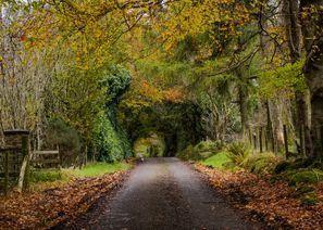 Szállás Omagh, Észak-Írország