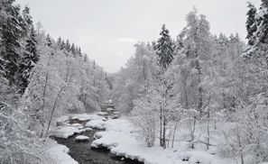 Szállás Nurmijarvi, Finnország