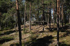 Szállás Paimio, Finnország